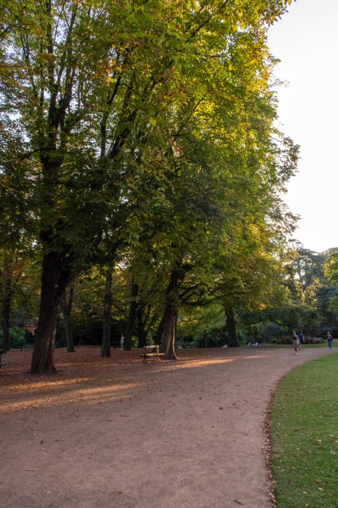 Jardin Vauban, un banc dans la lueur du coucher de soleil