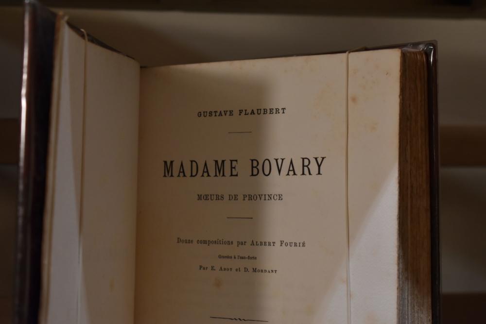 Madame Bovary de Flaubert